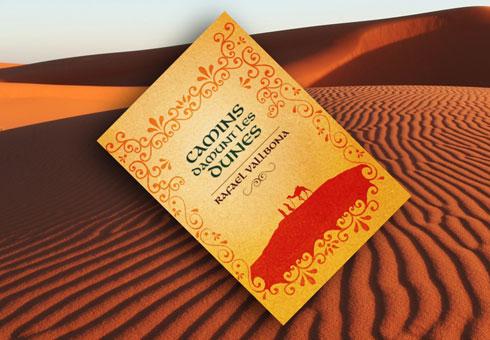 camins-damunt-les-dunes